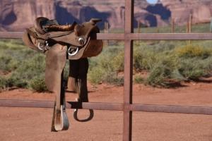 Fellsattel auf einem Zaun